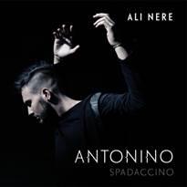 Antonino Ali nere