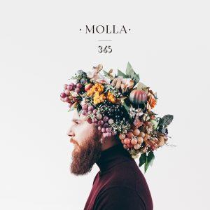 Molla 365 album