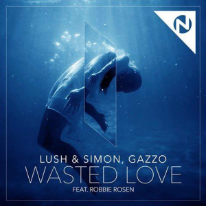 Lush & Simon Wasted Love